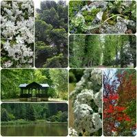 Photo taken at Zirci Arborétum by Zsanett on 5/16/2016