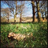 Das Foto wurde bei Richmond Park von Philip A. am 4/20/2013 aufgenommen