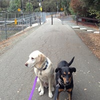 Photo taken at Contra Costa Canal Regional Trail by Nate G. on 10/31/2012