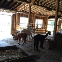 Photo taken at Evergreen Alpaca by Kevin M. on 8/17/2013