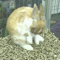 Photo taken at Pet Food Center by David B. on 10/28/2012