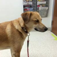 Photo taken at Katy Trail Animal Hospital by Austin L. on 5/22/2014