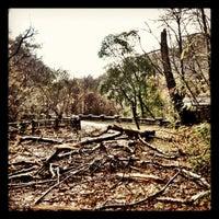 Foto diambil di Forbidden Drive Trail oleh DAVi D. pada 10/30/2012