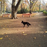 11/20/2012 tarihinde Orsolya T.ziyaretçi tarafından Városmajor'de çekilen fotoğraf