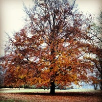 Foto tomada en Schillerpark por Roldano D. el 11/18/2012