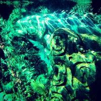 Photo taken at Finding Nemo Submarine Voyage by Mousetalgia P. on 1/21/2013