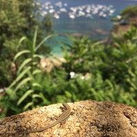Foto tomada en Hotel Mediterrani por Emre E. el 7/12/2014