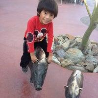 Photo taken at Arizona-Sonora Desert Museum by Talia L. on 1/2/2014