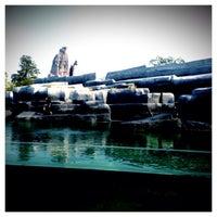 Foto scattata a Rocher du Zoo de Vincennes da Lionel F. il 9/24/2014