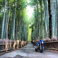 Photo taken at Arashiyama Bamboo Grove by Naoto S. on 12/26/2012