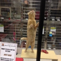 Photo taken at PetSmart by Kim W. on 7/19/2014