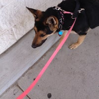Photo taken at PetSmart by Kim W. on 5/11/2014
