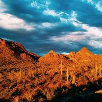 Photo taken at Saguaro National Park by Shaun M. on 9/22/2013