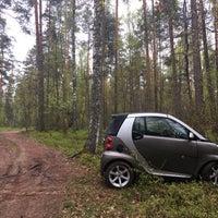 Photo taken at Реликтовый дуб by GigaBass on 5/8/2017