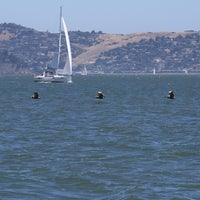 Photo taken at Crissy Field by Russell D. on 6/1/2013