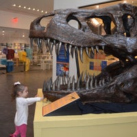 Photo taken at Delaware Museum Of Natural History by Ted R. on 9/4/2017