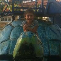 Photo taken at Çocuk Oyun Parkı by Tamer on 7/16/2013