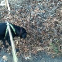 Photo taken at dog Walk by Nate P. on 12/3/2012
