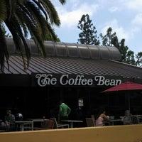 Photo taken at The Coffee Bean & Tea Leaf by Vivian C. on 5/9/2013