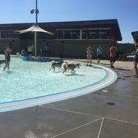 Photo taken at The Bay Aquatics Center by Jennifer E. on 9/11/2016