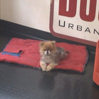 Photo taken at Downtown Dog Lounge by Katie B. on 3/10/2013