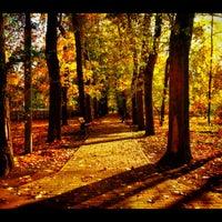 Снимок сделан в Щемиловский детский парк пользователем Dmitry K. 10/15/2012
