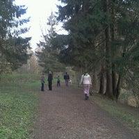 Das Foto wurde bei Ватутинский лес von Tatiana O. am 10/14/2012 aufgenommen