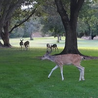 Photo taken at Ancil Hoffman Golf Course by David B. on 9/2/2013