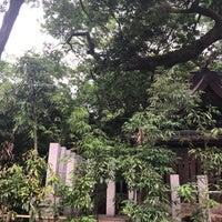 6/15/2018にHitoshi K.が弓弦羽の杜で撮った写真