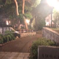 7/12/2018にHitoshi K.が弓弦羽の杜で撮った写真