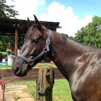Photo taken at Central Virginia Horse Rescue by Milissa S. on 7/14/2013