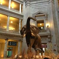 Foto tirada no(a) Smithsonian National Museum of Natural History por Kei O. em 4/9/2013