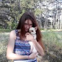 Снимок сделан в Зелена Садиба пользователем Svetlana Z. 6/2/2015