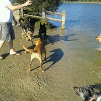 Photo taken at James Island County Park Dog Park by Kathy A. on 1/16/2013
