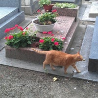 Photo taken at Montmartre Cemetery by Mass N. on 8/27/2013