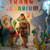 Photo taken at พิพิธภัณฑ์สัตว์น้ำราชมงคลตรัง by สุดารัตน์ บ. on 2/22/2016