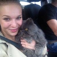 "Photo taken at Ветеринарная клиника ""Друг"" by Maya T. on 5/20/2014"