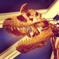 Photo taken at DinoLand U.S.A. by Heather R. on 2/13/2013