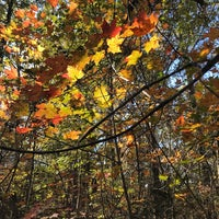 Photo taken at Uwharrie National Forest by Chris on 11/14/2017
