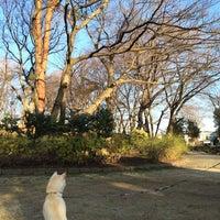 Photo taken at Tsukayama Park by Kumiko H. on 3/7/2014