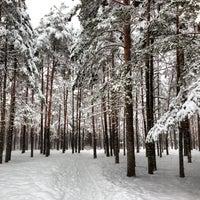 Photo taken at Vabaduse park by Ingvar P. on 2/11/2013
