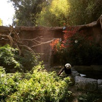Photo taken at Giant Panda Research Station by Leonardo P. on 3/18/2015