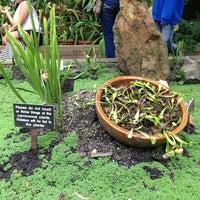 Photo taken at Botanical Garden Lounge by Ana C. on 6/3/2013