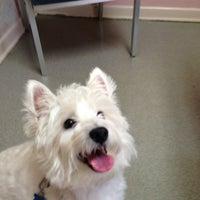 Photo taken at Roanoke Animal Hospital by Fred B. on 9/16/2013