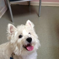 Photo taken at Roanoke Animal Hospital by Fred B. on 9/6/2013