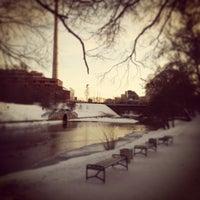 Снимок сделан в Дендрологический парк пользователем Роман Щ. 1/18/2013