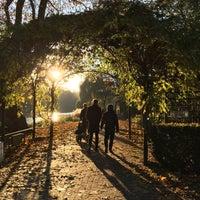 Foto tomada en Lietzenseepark por Britta F. el 11/13/2016