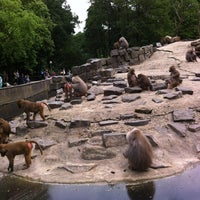 Photo taken at Dierenpark Emmen by Saskia v. on 6/22/2013