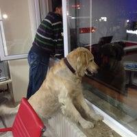 Photo taken at All Time Turizm ve Seyahat Acentesi by Tahir Tahsin Ç. on 11/21/2013