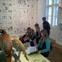Photo taken at Naturkundemuseum by Stefan H. on 3/28/2013